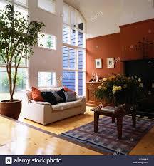 weißes sofa und baum in topf in großen modernen split level