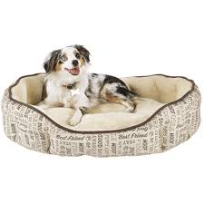 Trusty Pup Dog Bed by Dog Beds U0026 Bedding Best Large U0026 Small Dog Beds On Sale Petco