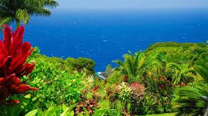 100 Truck For Sale On Maui Have 20M You Can Buy The Garden Of Eden In Hawaii Realtorcom