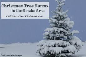 Christmas Tree Farm Lincoln Ne by Frosty U0027s Pines Christmas Trees Family Fun In Omaha