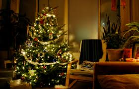 Tips For Caring Your Christmas Tree