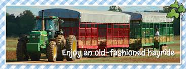 Free Pumpkin Patch In Fredericksburg Va by A Farm Adventure For The Whole Family Belvedere Plantation
