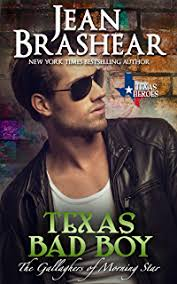 Texas Bad Boy The Gallaghers Of Morning Star Book 3 Heroes