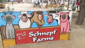Schnepf Farms Halloween by Hanging At Schnepf Farms Youtube