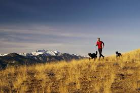 High Gear The Haywire Heart Is Essential Reading For Ultrarunners