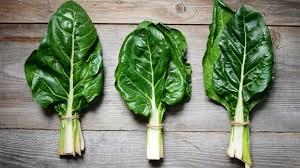 comment cuisiner les feuilles de betterave tout ce qu il faut savoir sur la blette ou bette cuisine saison