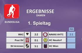 Handball Bundesliga 201415