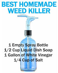 Best Home Made Weed Killer Diy Cheap