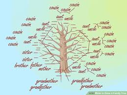 Image Titled Draw A Family Tree Step 2