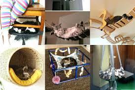Beds Unique Dog Beds Australia Cat Fancy Feline Uk For