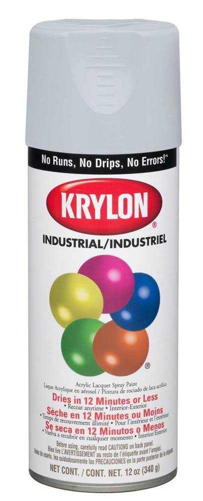 Krylon Interior and Exterior Decorator Paint - Flat White