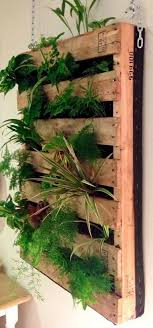43 Indoor Vertical Rich Pallet Garden