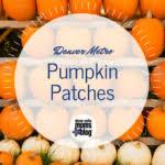 Denver Area Pumpkin Patches by Denver Area Pumpkin Patches
