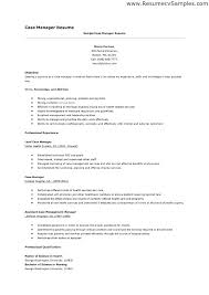 Account Manager Resume Objective Examples
