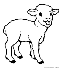 Little Lamb Coloring Page From Domestic Sheep Category Select 20946 Printable Crafts Of Cartoons Nature Animals Bible And Many More