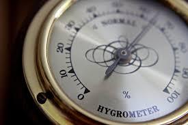 luft befeuchten mit 20 tipps luftfeuchtigkeit erhöhen top
