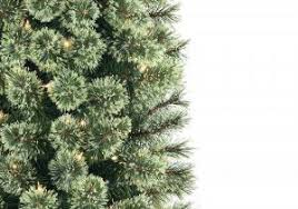 Cozy Cashmere Pencil Christmas Tree Types Of 7ft Pre Lit