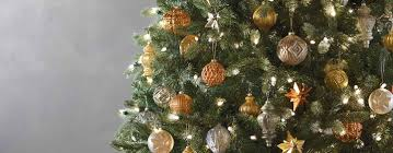 Types Of Christmas Tree Decorations by Best Real Christmas Tree Type Christmas Lights Decoration