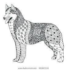 Siberian Husky Coloring Pages Running Realistic