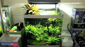 Aquascape Pond Products Aquarium Designs Pond Inc Appartment ... Cuisine Perfect Aquascape Aquarium Designs Ideas With Hd Backyard Design Group Hlight And Shadow Design For Your St Charles Il Aqua We Share Your Passion For Success Classic Series Grande Skimmer Aquascapes Amazoncom 20006 Aquascapepro 100 Submersible Pump Pond Supply Appartment Freshwater Custom 87 Best No Plant Images On Pinterest Ideas
