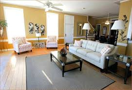 Safari Living Room Decorating Ideas by Interesting Safari Decorating Ideas For Living Room Gallery Best