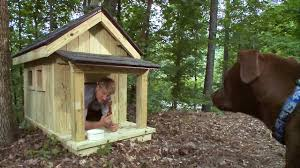 pete nelson builds the ultimate dog house treehouse masters