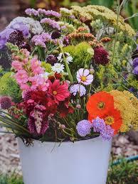 222 best the flower farm images on Pinterest