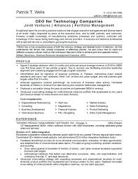 Information Technology Executive Resume Examples With Sample For Produce Awesome Samples 892