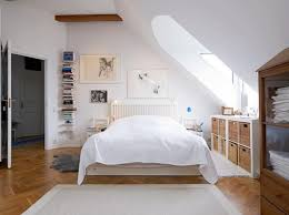 Scandinavian Bedroom With Arched Skylight