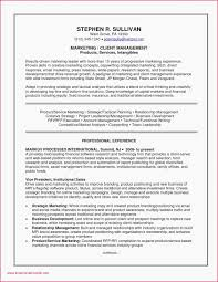 Sample Resume For General Manager Manufacturing Vice President Of Sales Examples Resumes Project