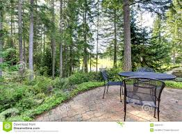 Backyard With Pine Trees And Metal Table With Chairs. Royalty Free ... Garden Design With Backyard Landscaping Trees Backyard Fruit Trees In New Orleans Summer Green Thumb Images With Pnic Park Area Woods Table Stock Photo 32 Brilliant Tree Ideas Landscaping Waterfall Pond Stock Photo For The Ipirations Shejunks Backyards Terrific 31 Good Evergreen Splendid Grass Scenic Touch Forest Monochrome Sumrtime Decorating Bird Bath Fountain And Lattice Large And Beautiful Photos To Select Best For