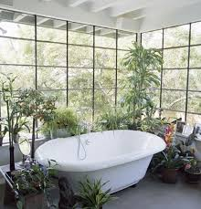 Best Bathroom Pot Plants by Stylish Design For Indoor Flowering Plants Ideas Best Ideas About