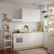 cuisine sur pied pied meuble cuisine ikea pour idees de deco de cuisine unique