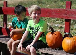 Pumpkin Patches In Birmingham Al Area by Photos Griffin Farms Pumpkin Patch Tuscaloosa News Tuscaloosa Al