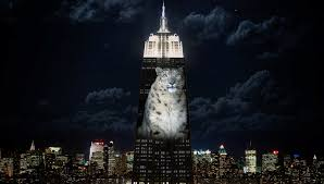 Pro life billboard removed in NYC but Empire State Building