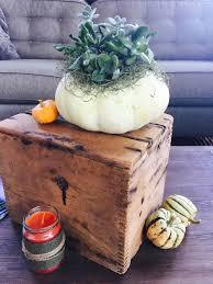 Pumpkin Throwing Up Guacamole by Brooding On U2014 Brood Farm