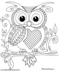 More Eclectic Owls An Adult Coloring Book Volume 5 By G T