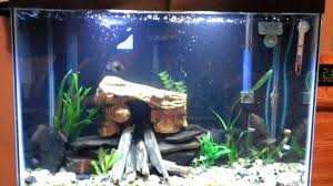 Design Your Own Fish Tank – Dawnwatson.me Cuisine Okeanos Aquascaping Custom Aquariums Fish Tanks Ponds Aquarium Design Group Aquarium Modern Awesome Home Photos Decorating Ideas Office Tank Dental Vastu Location Coffee Table For Sale Beautiful Fish Tank Designs Dawnwatsonme For Luxury Townhouse In Ldon Best Designs And Landscaping Including Fishy Business Cool Images Inspiration Tikspor