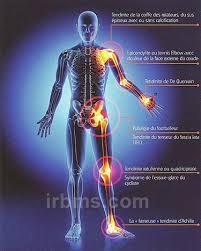 douleur interieur genou course a pied tendinites 16 diagnostics fréquents observés en médecine du sport