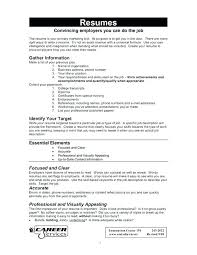 Resume For It Job Jobs How Government Examples Work History Gap