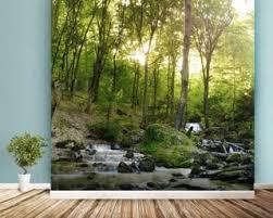 Tree Wallpaper & Forest Wallpaper Murals