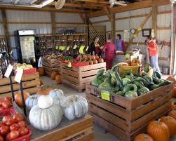 Apple And Pumpkin Picking Maryland by Harford County Pumpkin Farms Bel Air News U0026 Views