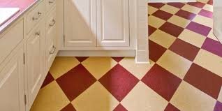 Image Of Retro Floor Tiles Kitchen