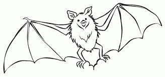 Coloring Page Halloween Bat Color Pages 600x282 4675 High Definition