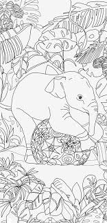 Adult Coloring Book Elephant Clip Art Hand Drawn By ValRa