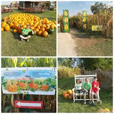 Siegels Pumpkin Farm by Family Fun Reviews Archives My Sweet Sanity