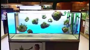 Schwimmende Stein Steine Im Aquarium (by Oliver Knott) - YouTube Aquascaping Artist Oliver Knott Scapingaquarium Pinterest Schwimmende Stein Steine Im Aquarium By Knott Youtube Aquascapi Sequa Interzoo 2012 Feat Chris Lukhaup Live Part 3 The Island Aquascape Step Aquariology With At The Koelle Zoo Heidelberg New Project Photo Editor Online And Editor Made Teil 1 Inspiration Tips Tricks Love Aquascaping Octopus Aquarium Via Aquac1ubnet