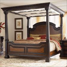 Queen Canopy Bed Curtains by Bedroom Wonderful Canopy Queen Size Princess Canopy Beds For