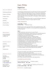 Site Manager CV Supervisor