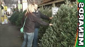 Fresh Cut Christmas Trees At Menards by Menards Garden Center
